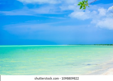 View on paradies beach of island Holbox in Yucatan - Mexico