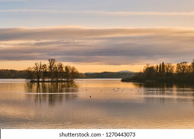 View on pond Opatovicky rybnik with ducks and reflections on water in Trebon at sunset