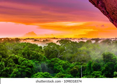 View on purple sunset over rainforest by Leticia in Colombia