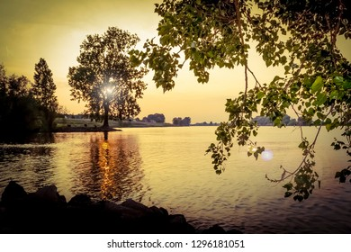 View on the river Maas near s-Hertogenbosch, The Netherlands. Colorshift by intent.
