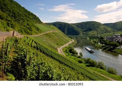 View on the river Mosel - Mosel, Germany