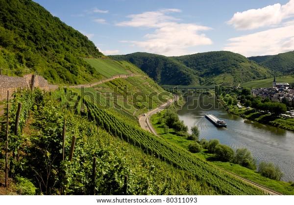 Blick auf den Fluss Mosel - Mosel, Deutschland