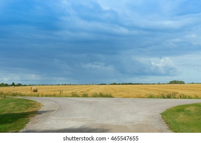 view on road and rural field with crop with heavy rainy cloudscape on background