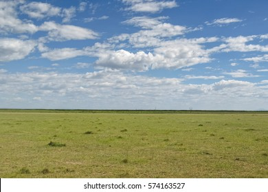 View on savanna plain against cloudy sky background. Lake Manyara National Park, Tanzania, Africa.