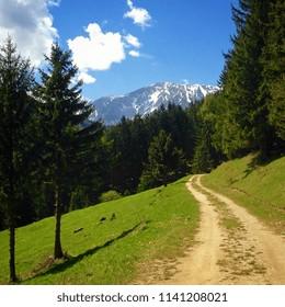 View on the Schneeberg, Lower Austria, Austria