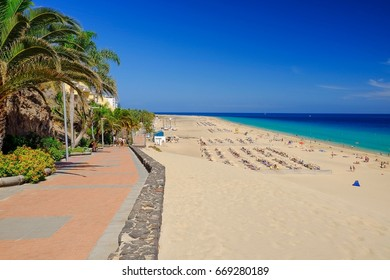 View on the street with green palm trees, Atlantic ocean with green water, beach with golden sand and blue sky in Morro Jable on the Canary Island Fuerteventura, Spain.
