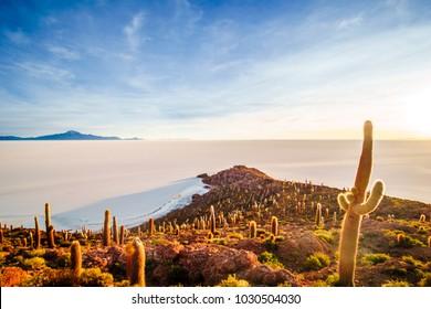 View on sunrise over island incahuasi by salt lake Uyuni in Bolivia