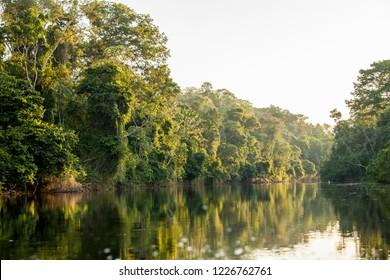 View on the Suriname river in Upper Suriname, Awarradam jungle camp