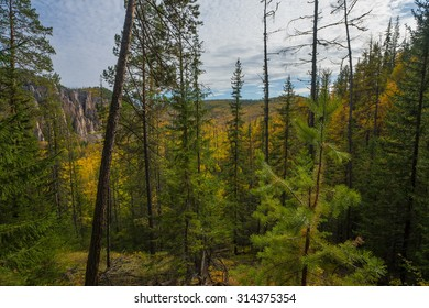 View on Taiga in Siberia, Saha, Russia