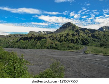 View on Thorsmork valley with green vegetation of moss, fern, birchwood, and other small shrubs under blue sky in sunny summer day, Iceland