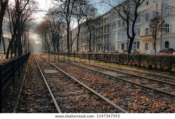 View on the tram tracks in the historic city of Cracow, Poland. Autumn leaves all over the image.