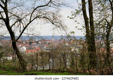 view on trees and the built structure in the background in bielefeld germany photographed during a sightseeing tour at a sunny day