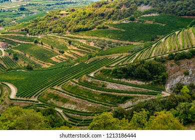 View on Valpolicella in the province of Verona - Italy