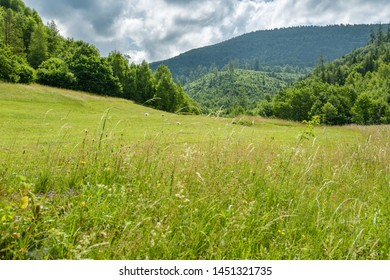 View on Velka Raca peak in Kysucke Beskydy mountains in Northern Slovakia close to village of Oscadnica