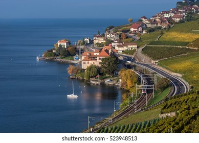 View on the village Rivaz and Geneva Lake from vineyard terraces. Highway and railway with the train.