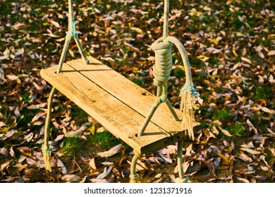View on wooden swing on ropes in atumn