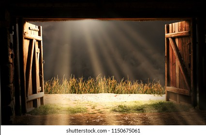 View from an open door of an old wooden barn. The sun shines through the storm clouds. Before the barn there is a corn field.