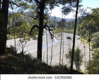 View of Orongorongo river valley from bushclad ridge in Remutuka Forest Park near Wellington New Zealand