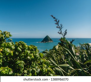 View out to an island, off coastal walkway, at Paritutu Rock. Blue, scenic, sea, landscape, exotic concepts. Green foreground frame. Shot in New Plymouth, North island, New Zealand, NZ.