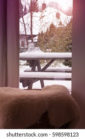 view out of window into snowy garden