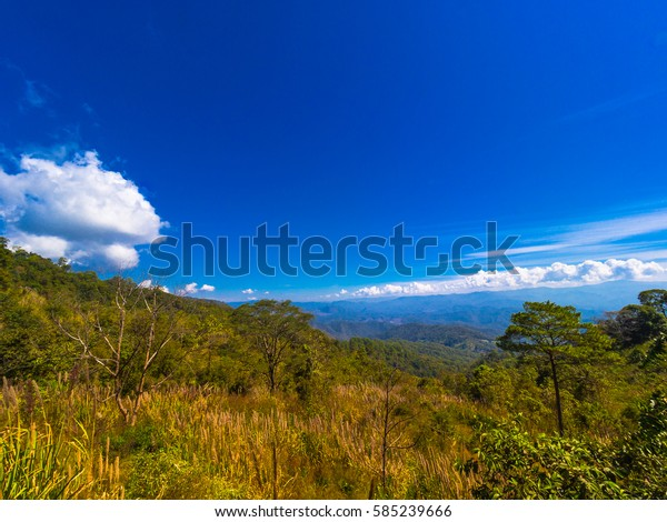 View from outdoor natural park in northern of Thailand
