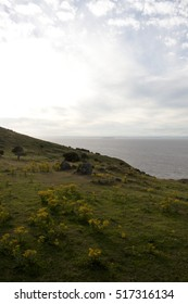 View over Brisol channel from Brean down, Somerset, England