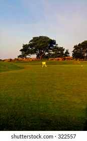 View over Carnoustie Golf Course