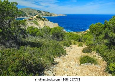 view over cliffs and wild coastline in Cala Gat near Cala Rajada, Mallorca, Spain