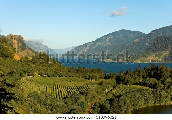 View over Columbia River,  Columbia River Gorge, Oregon.