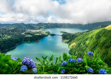 View over the crater lake at sete cidades on Sao Miguel island, with hydrangeas in the front.