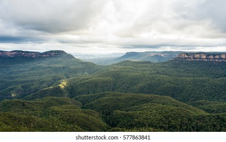View over famous Blue Mountains, Australia. Endless eucalyptus forest, cliffs and misty horizon. Taken during sunset on a cloudy day.
