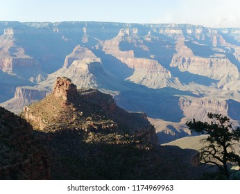 View over the Grand Canyon with a hill and tree in the foreground and mountains in soft focus in the background in Arizona, USA