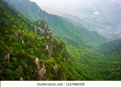 View over green forest with different coloring in Lushan National Park mountains in Jiangxi China