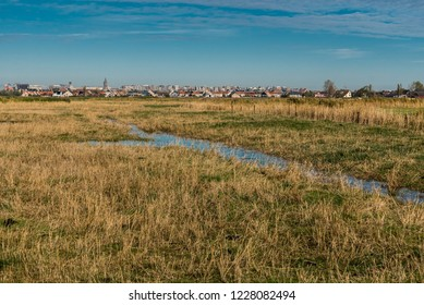 View over the green meadows at the polders in Uitkerke with the buildings of Blankenberge, Belgium in the background