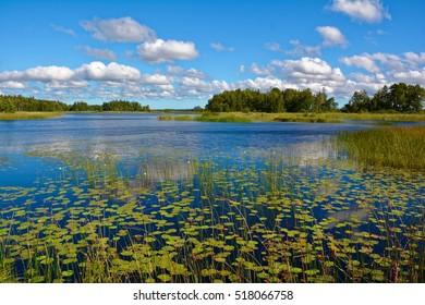 View over the Ivesjoe lake in Bromoella, Sweden