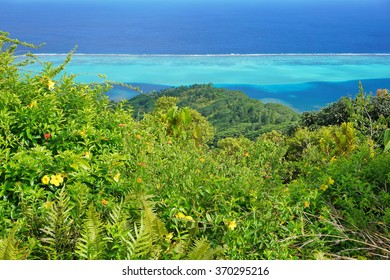 View over the lagoon from the top of the Mount Pohue Rahi with lush vegetation in foreground, Huahine island, Pacific ocean, French Polynesia