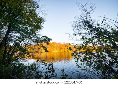 View over a lake in the fall with trees in autumn colors on the other side