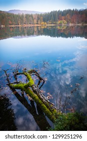 View over lake Laghi di Fusine near Tarvisio in Italy on a sunny morning in autumn with a branch in the water