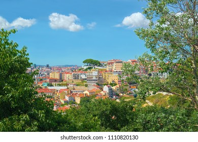 View over Lisbon city, Portugal, framed by trees, from a hill at sunny summer day.