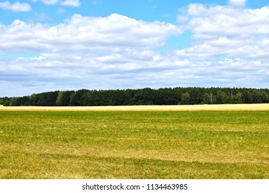 View over meadows and fields to a forest edge under a blue sky with white clouds