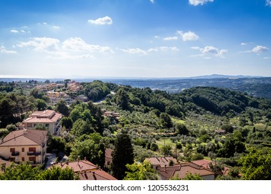 View over Mintescudaio / Tuscany