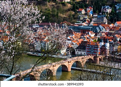 View over the old town and the old bridge of Heidelberg, Germany