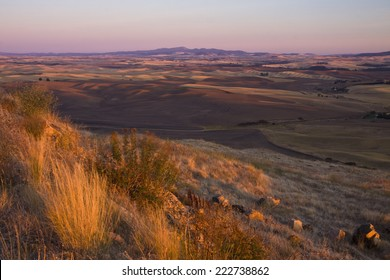View over patchwork of farms in autumn, Palouse Valley, eastern Washington State