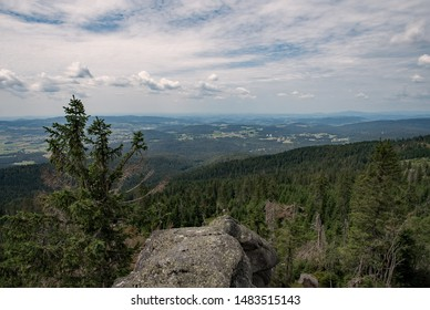View over a pine forest of the Dreisessel Mountains at the Bavarian Forest, Bavaria, Germany