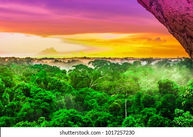 View over pink sunset over the Amazon rain forest by Leticia
