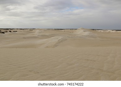 View over sand dune system in Western Australia