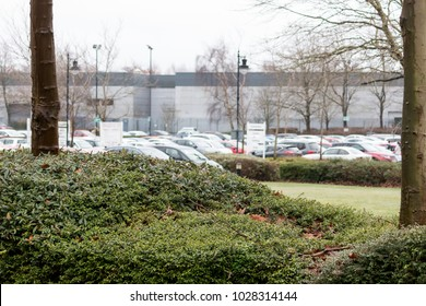 The view over a small hedge towards the office car parks and factories