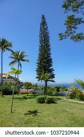 View over Sosua