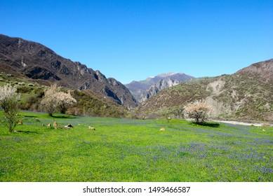 View over Transcaucasus (South Caucasus) mountains of the Greater Caucasus mountain range near Lahij village in Azerbaijan
