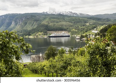 View over Ulvik Fjord